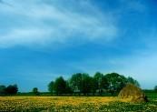 *Nadbiebrzańskie łąki